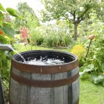 Regenwater afkoppelen